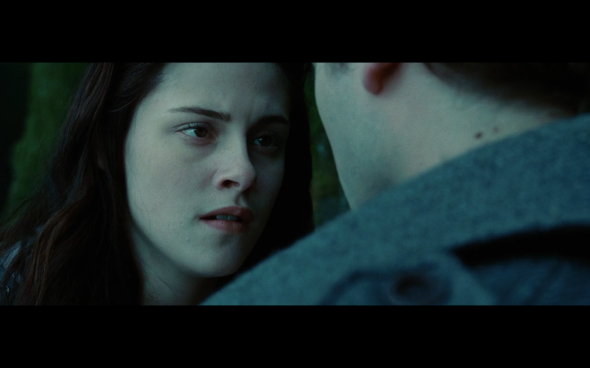Twilight - 736
