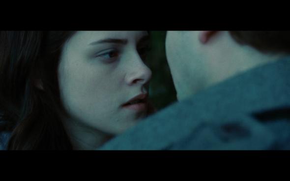 Twilight - 739