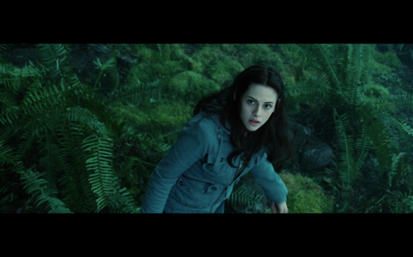 Twilight - 742
