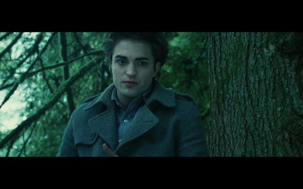 Twilight - 743