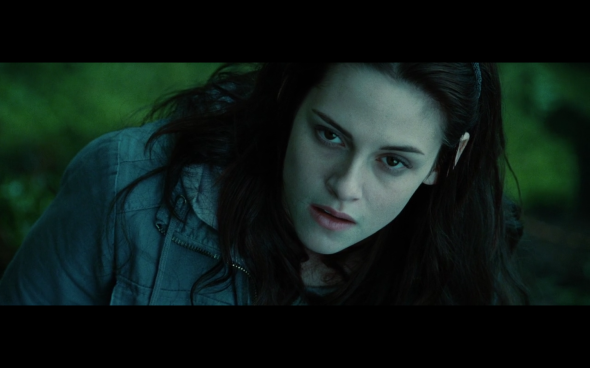 Twilight - 746