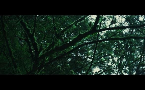 Twilight - 763