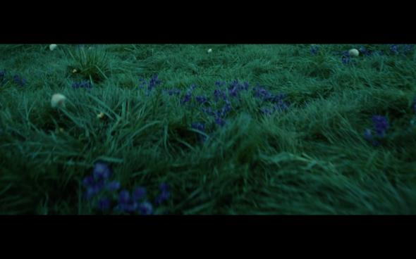 Twilight - 764
