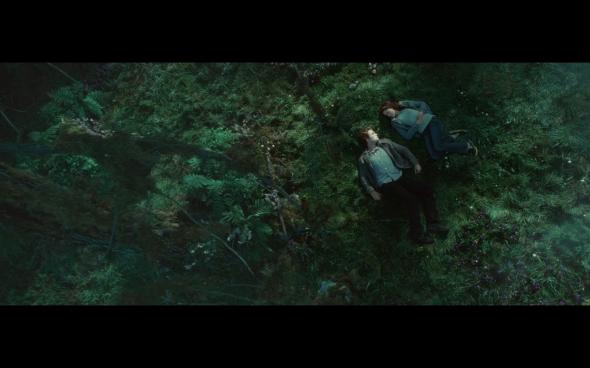 Twilight - 781