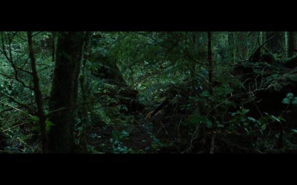 Twilight - 8