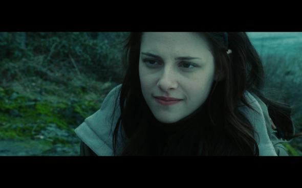 Twilight - 811