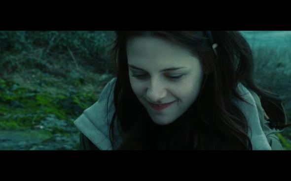 Twilight - 813