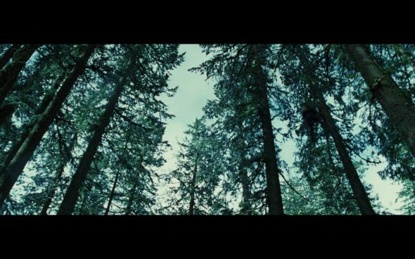 Twilight - 914