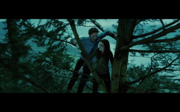Twilight - 917