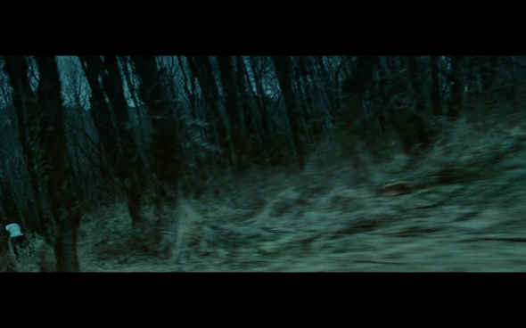 Twilight - 989