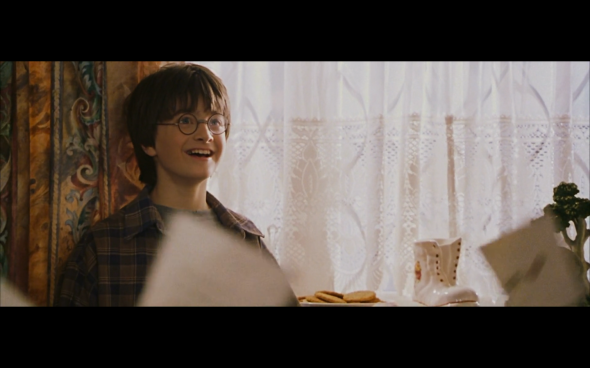 Harry Potter and the Sorcerer's Stone - 119