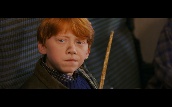 Harry Potter and the Sorcerer's Stone - 228