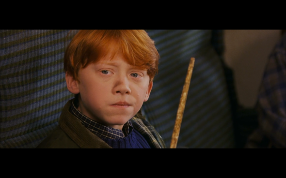Harry Potter and the Sorcerer's Stone - 229