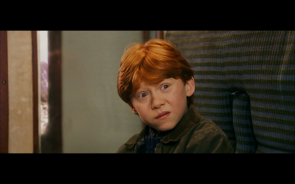 Harry Potter and the Sorcerer's Stone - 234
