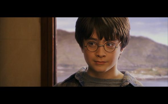 Harry Potter and the Sorcerer's Stone - 238
