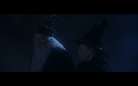 Harry Potter and the Sorcerer's Stone - 28
