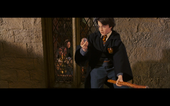 Harry Potter and the Sorcerer's Stone - 349