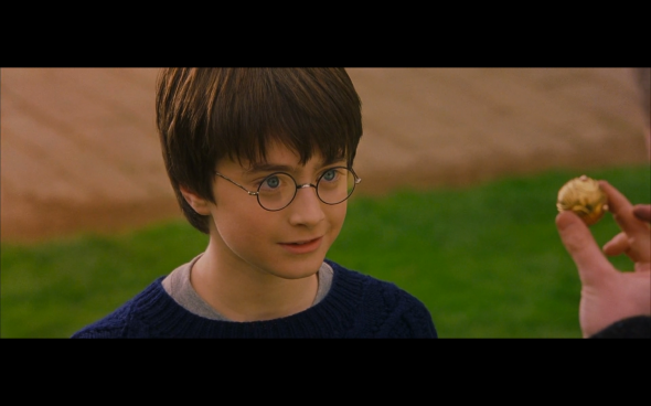 Harry Potter and the Sorcerer's Stone - 376