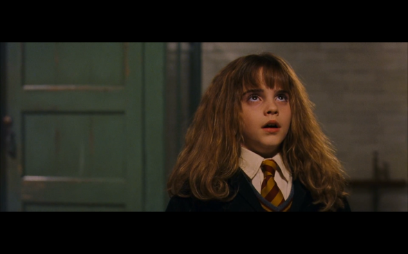Harry Potter and the Sorcerer's Stone - 412