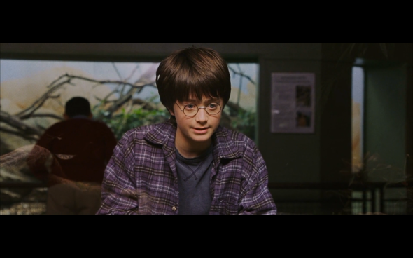 Harry Potter and the Sorcerer's Stone - 70
