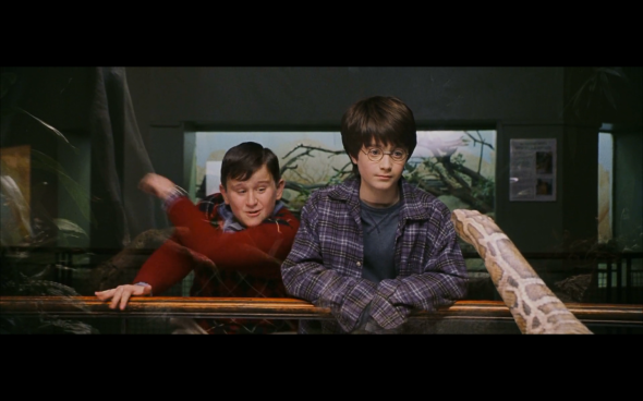 Harry Potter and the Sorcerer's Stone - 77