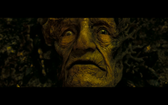 Pirates of the Caribbean Dead Man's Chest - 1152