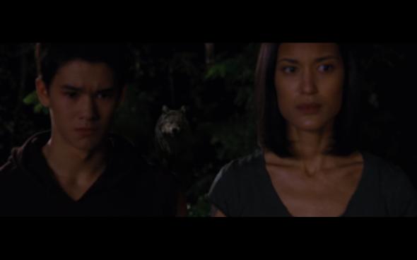 The Twilight Saga Breaking Dawn Part 1 - 1100