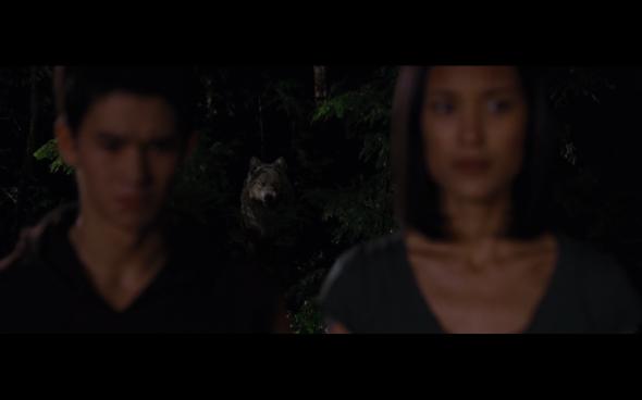 The Twilight Saga Breaking Dawn Part 1 - 1101