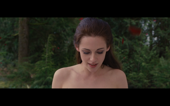 The Twilight Saga Breaking Dawn Part 1 - 111