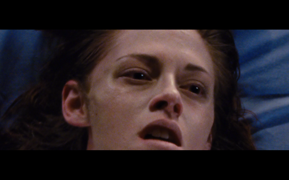The Twilight Saga Breaking Dawn Part 1 - 1133