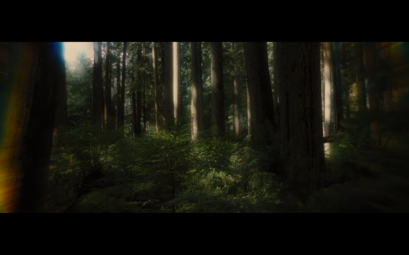 The Twilight Saga Breaking Dawn Part 1 - 1168