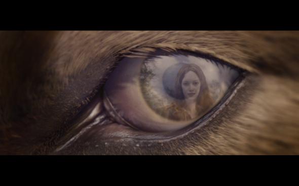 The Twilight Saga Breaking Dawn Part 1 - 1174