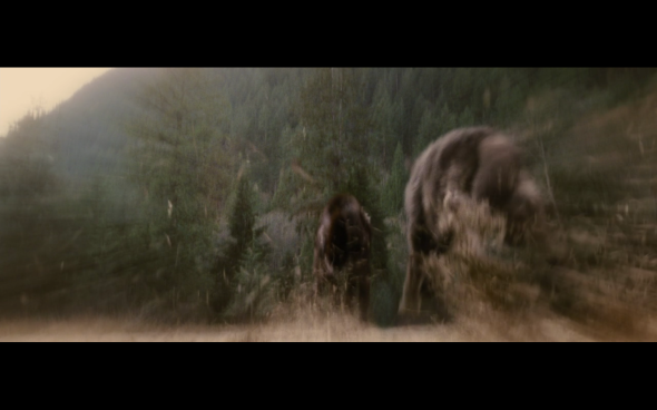 The Twilight Saga Breaking Dawn Part 1 - 1175