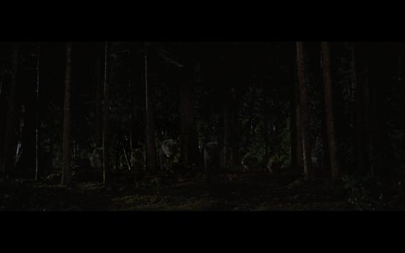 The Twilight Saga Breaking Dawn Part 1 - 1188