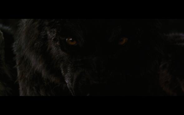 The Twilight Saga Breaking Dawn Part 1 - 1191