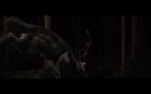 The Twilight Saga Breaking Dawn Part 1 - 1195