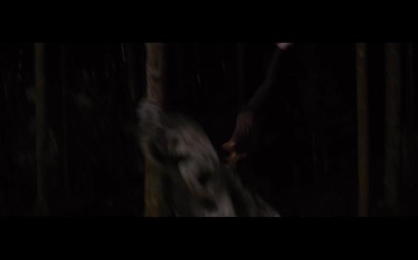 The Twilight Saga Breaking Dawn Part 1 - 1196