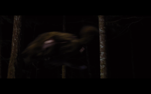 The Twilight Saga Breaking Dawn Part 1 - 1199