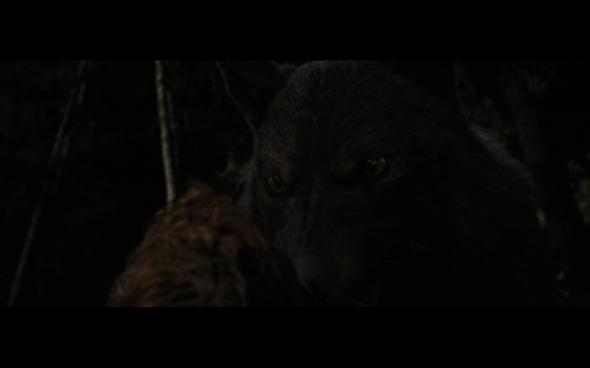 The Twilight Saga Breaking Dawn Part 1 - 1201