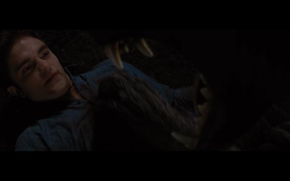 The Twilight Saga Breaking Dawn Part 1 - 1203