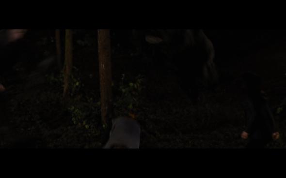 The Twilight Saga Breaking Dawn Part 1 - 1207