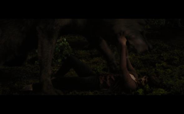The Twilight Saga Breaking Dawn Part 1 - 1213