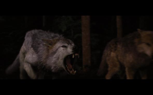The Twilight Saga Breaking Dawn Part 1 - 1216