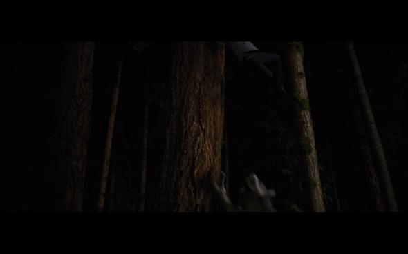 The Twilight Saga Breaking Dawn Part 1 - 1219