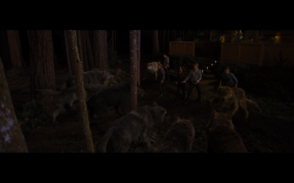 The Twilight Saga Breaking Dawn Part 1 - 1222