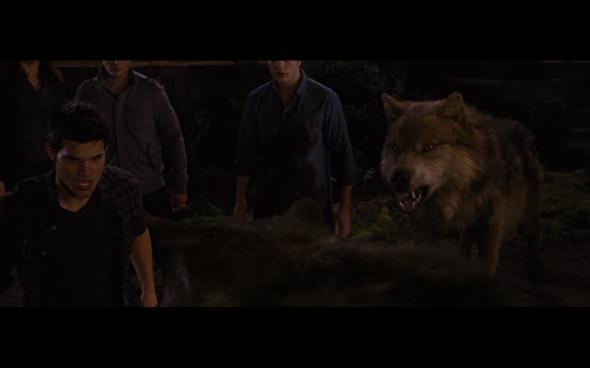 The Twilight Saga Breaking Dawn Part 1 - 1226