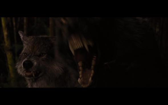 The Twilight Saga Breaking Dawn Part 1 - 1228