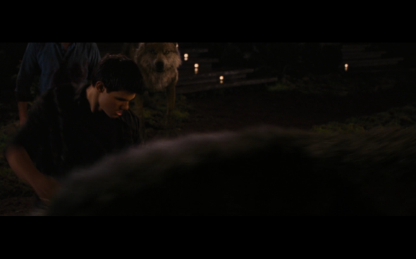 The Twilight Saga Breaking Dawn Part 1 - 1229