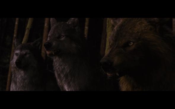 The Twilight Saga Breaking Dawn Part 1 - 1234