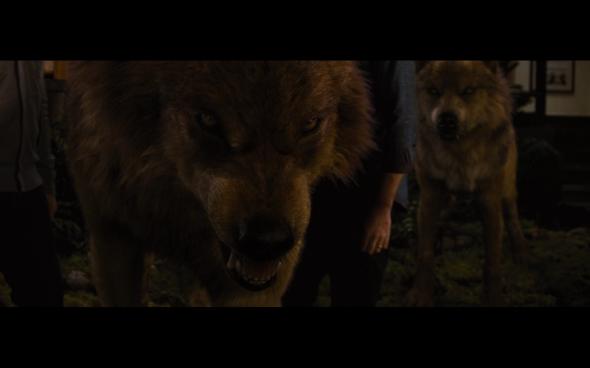 The Twilight Saga Breaking Dawn Part 1 - 1235